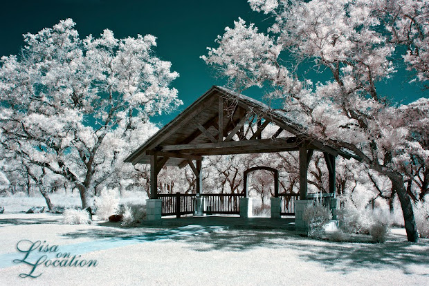 Boulder Springs, New Braunfels, wedding venues, wedding photography, Austin, San Antonio, San Marcos, infrared wedding photography