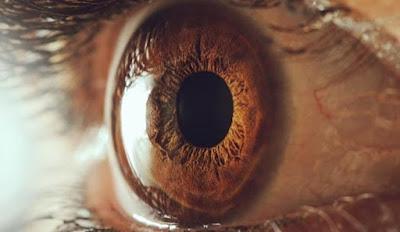 Kacamata Bionik Ini Bisa Sebagai Obat Kebutaan