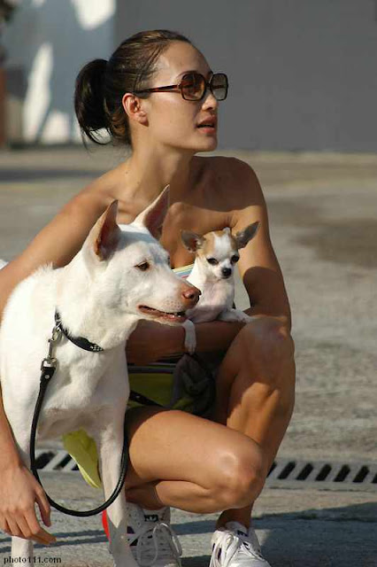 Maggie Q like dogs