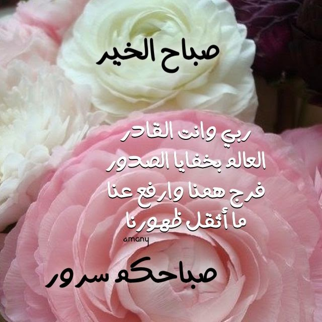 صباح الخير صباحكم سرور