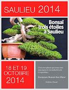 Saulieu  2014