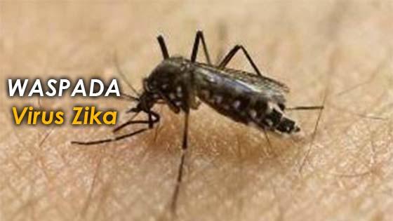 5 Perkara penting mengenai Virus Zika