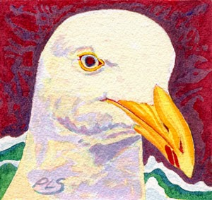 "Seagull at Alewife Run - 1 of 2 - Watercolor 5"" x 5"""