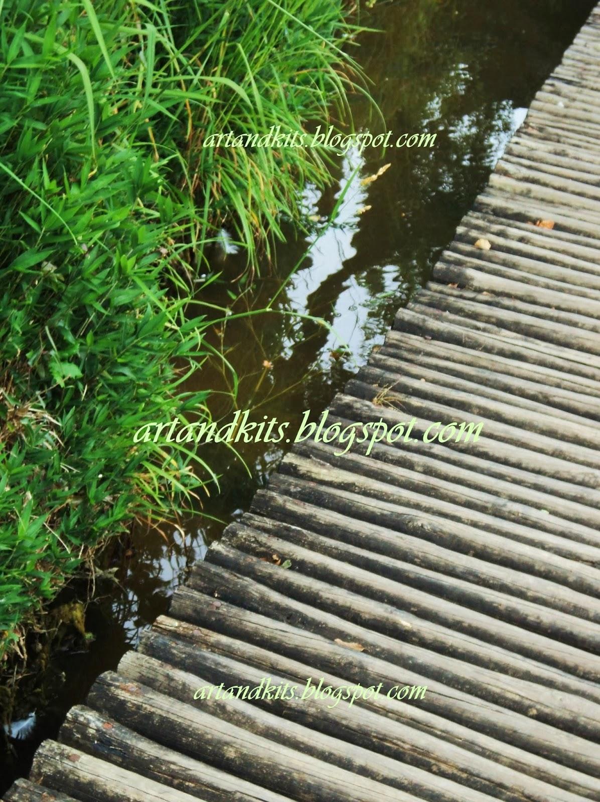 Pelos caminhos, nos encontramos, e pelos caminhos nos perdemos. Tudo sempre depende dos caminhos que escolhemos. / Through the paths we can find ourselves, and through the paths we can lose ourselves. Everything always depend of the paths we choose.