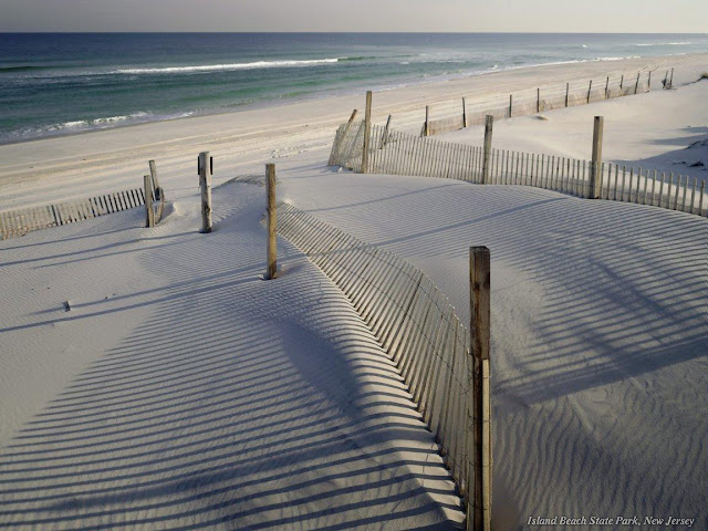 beach sand waves serene