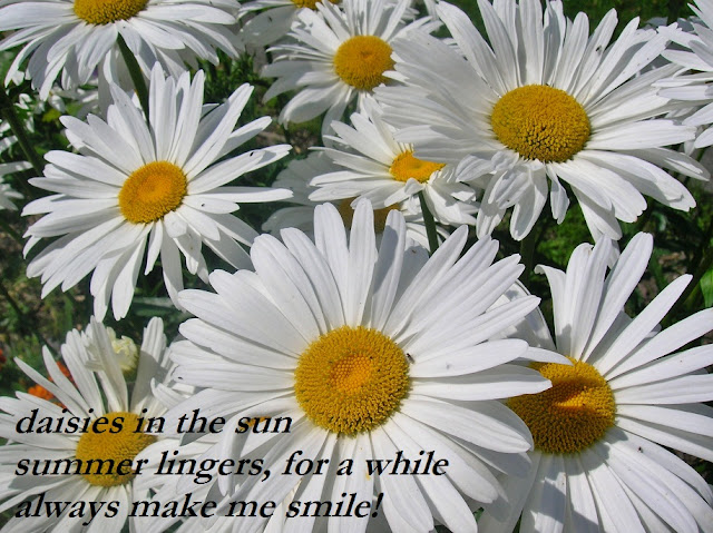 Take A Happy... Poems About Daisy Flowers