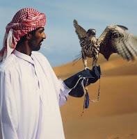 Naast katachtigen blijken ook verschillende soorten roofvogels populair te zijn bij de Arabieren in de Verenigde arabische Emiraten.