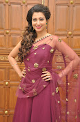Hamsa Nandini at Bengal tiger audio-thumbnail-2