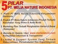 5 Pilar