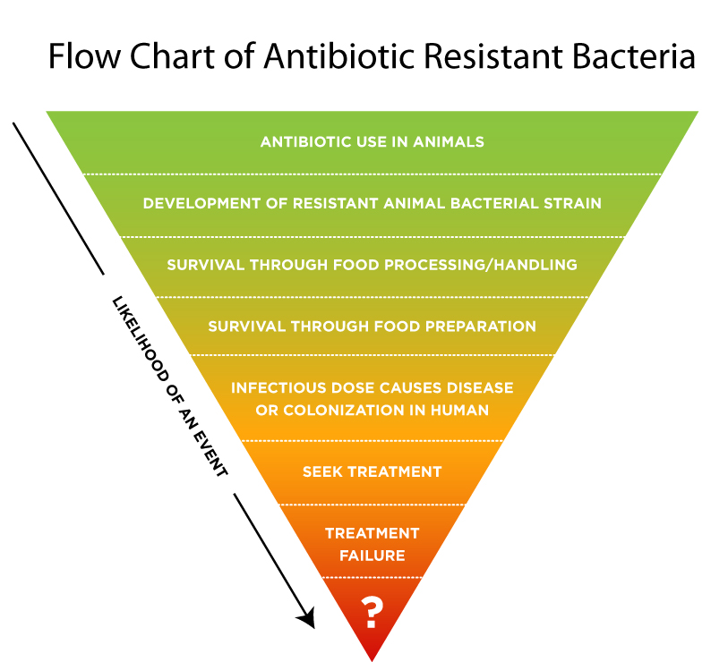 mrsa resistance to anti biotics Mrsa (methicillin-resistant staphyloccus aureus) is a strain of staphyloccus aureus that is resistant to the antibiotic methicillin and other penicillin-based antibiotics that hospitalizes 292,000 people annually.