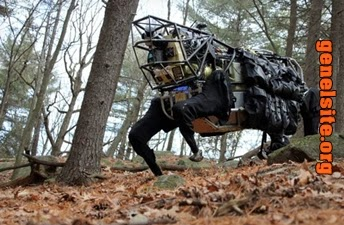 Google robot üreticisi boston dynamics'i satın aldı