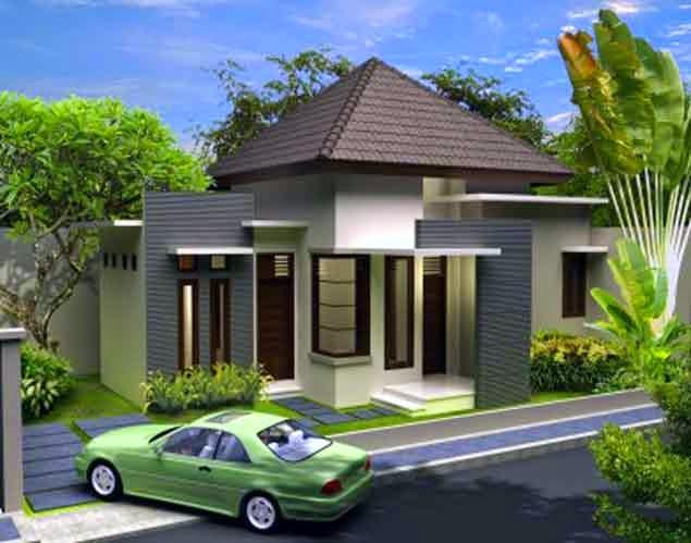 Desain Rumah Minimalis 1 Lantai
