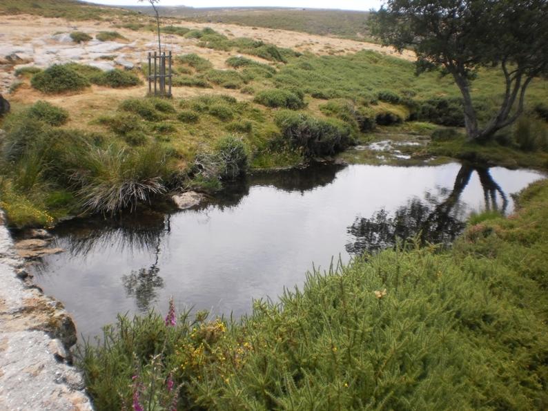 Água Límpida da Serra