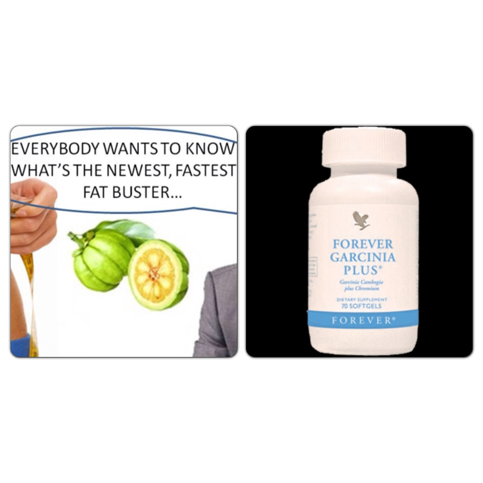 garcinia-cambogia-newest-fastest-fat-buster-pt-3