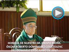 VIDEO DE LA HOMILÍA DEL SR. OBISPO, DEL DÍA 25 DE JUNIO DE 2017