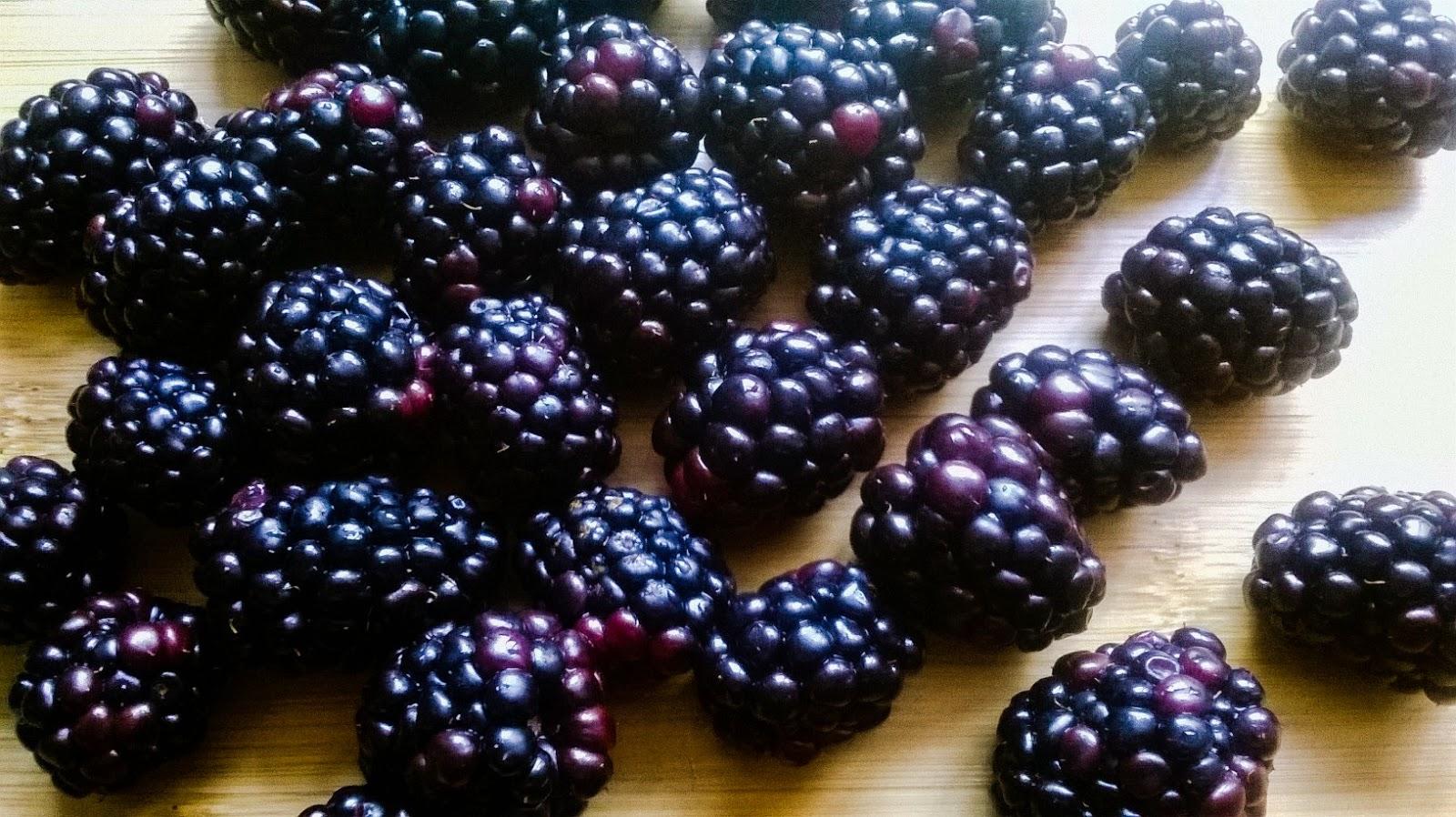 Blackberry Crum Cake {Rosca de Zarzamora con Crumble} | Bruni's Boulangerie