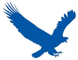 برنامج التحميل وتسريع التحميل ايجل جت EagleGet