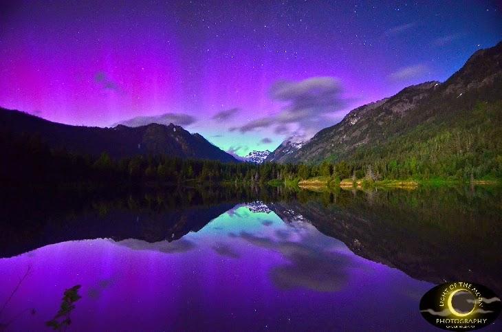 Menikmati Indahnya Aurora Ungu Cantik di Langit Washington