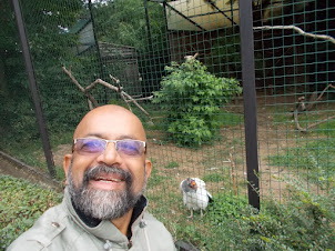 """Selfie with a """"King Vulture""""."""