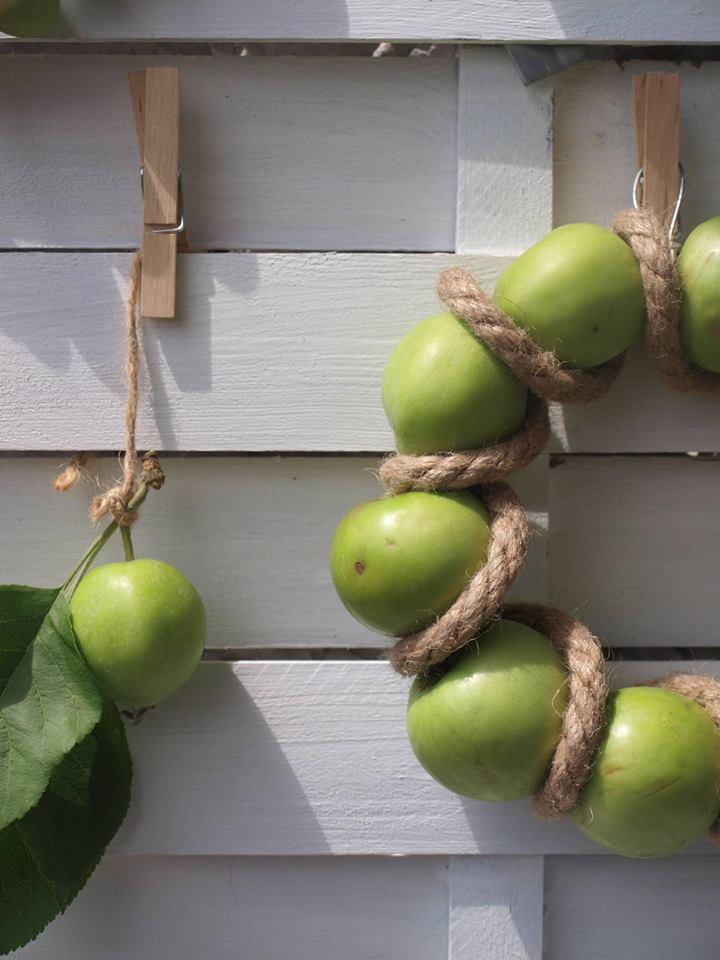wianek z jabłek
