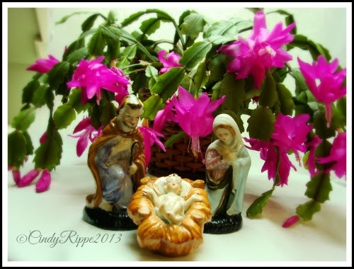 Nativity Figurines, Christmas, Christmas Cactus, Cindy Rippe