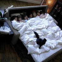 comfort-sleepers, wall beds murphy beds, cozy mattress