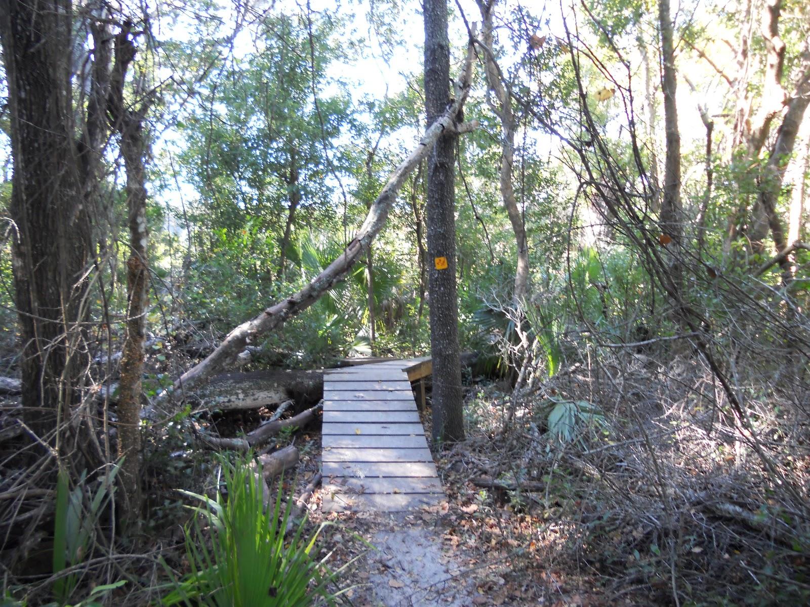 Mountain Bikes Trails in Florida Trail Map Mountain Bike