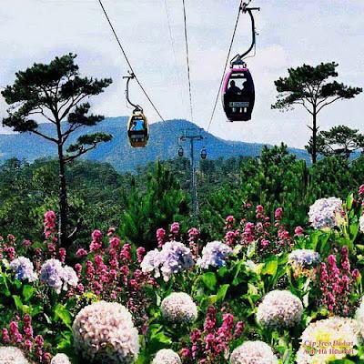 Da Lat Flower Festival - the city of flowers