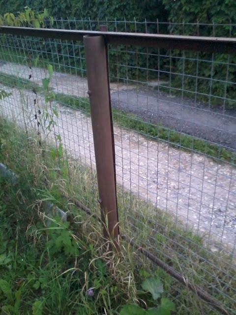Сетка рабица, забор, фото
