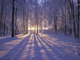 Seasons Images