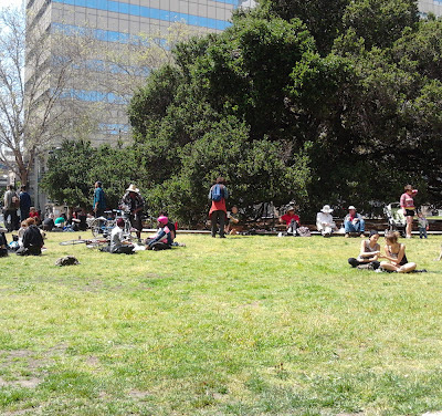 Oakland's grass is back (photo: Susan Galleymore)