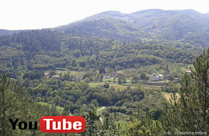 Studenica Online VIDEO