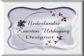 Designer Nederlandse Kaarten Uitdagingen