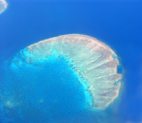 World's Largest Coral Reef
