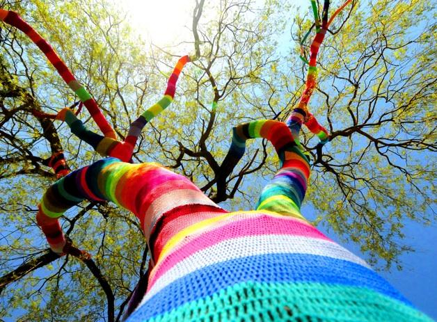 Knitting Trees Art : Miami art museum presents brick yarn bombing