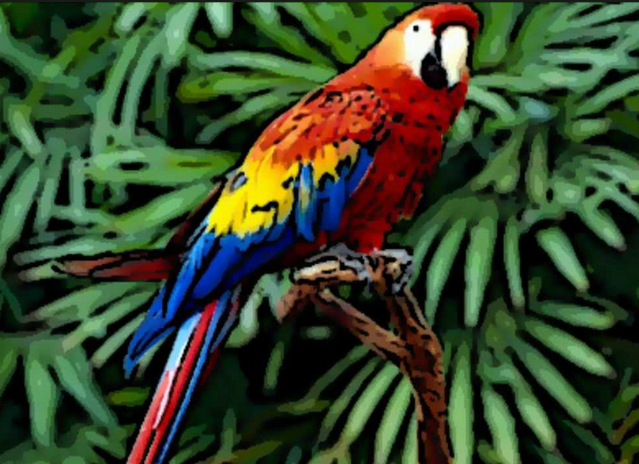 15 Koleksi Gambar Burung Kakak Tua yang Paling Unik Dan