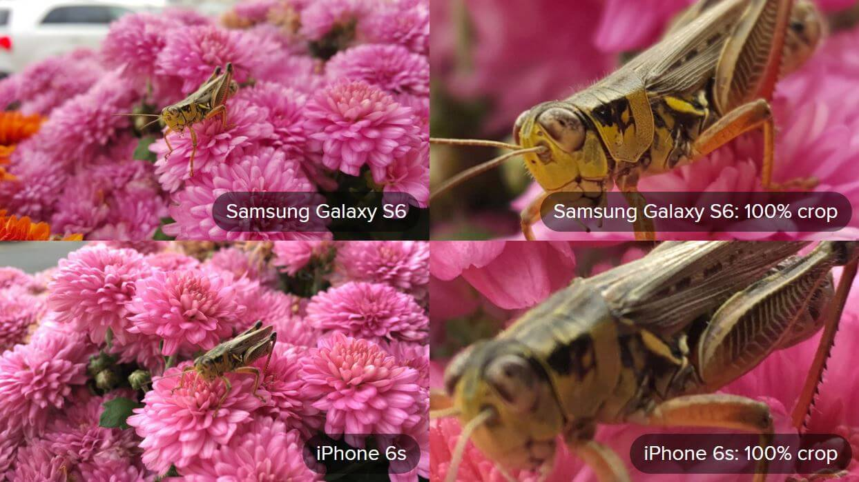 Nexus 5X vs Galaxy S6 Camera, LG G4 Camera and iPhone 6S ...