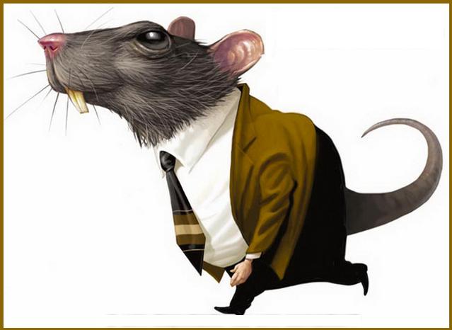 Resultado de imagem para temer rato