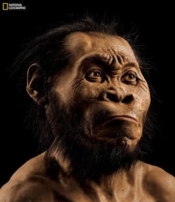 Σκελετοί στη Νότιο Αφρική «ανήκουν σε άγνωστο είδος ανθρώπου»