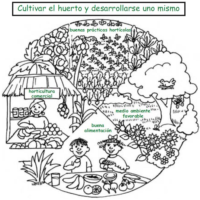 jardinitis: FAO: Crear un huerto escolar