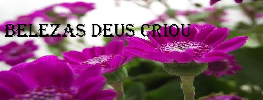 Belezas Deus Criou