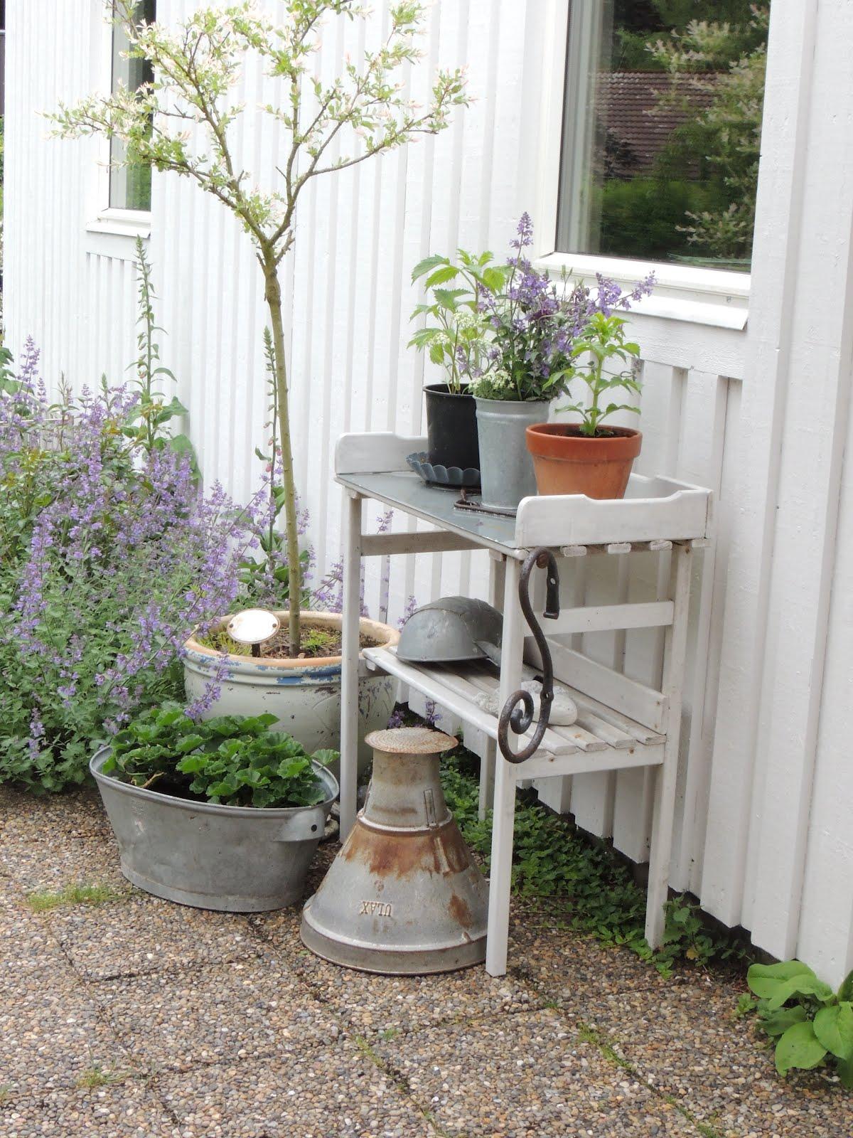 Syster vit: Planteringsbord