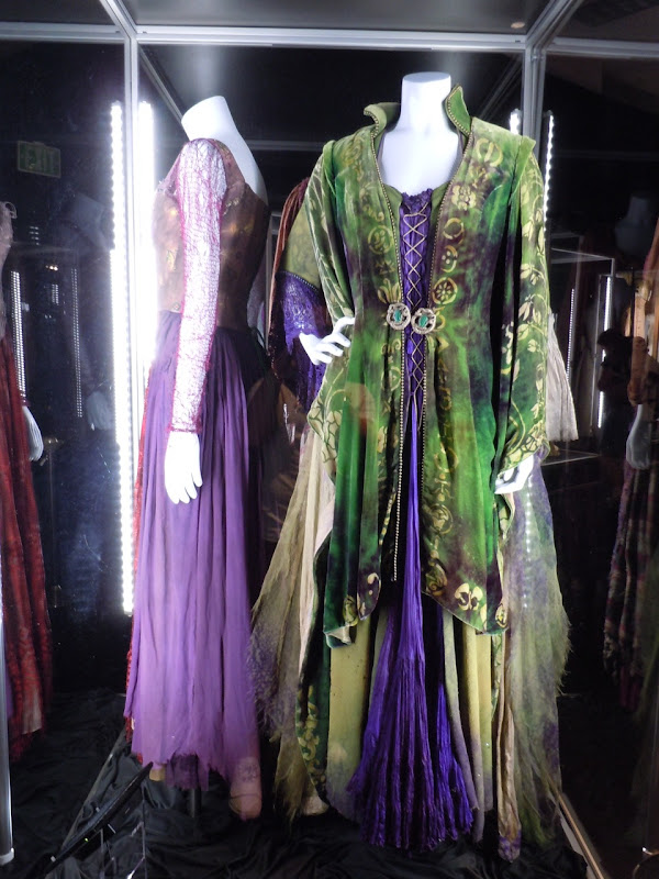 Hocus Pocus witch movie costumes