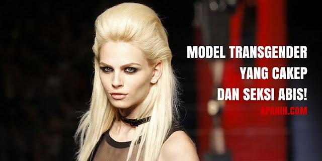 Model Transgender yang Cakep dan Seksi Abis! apanih.com