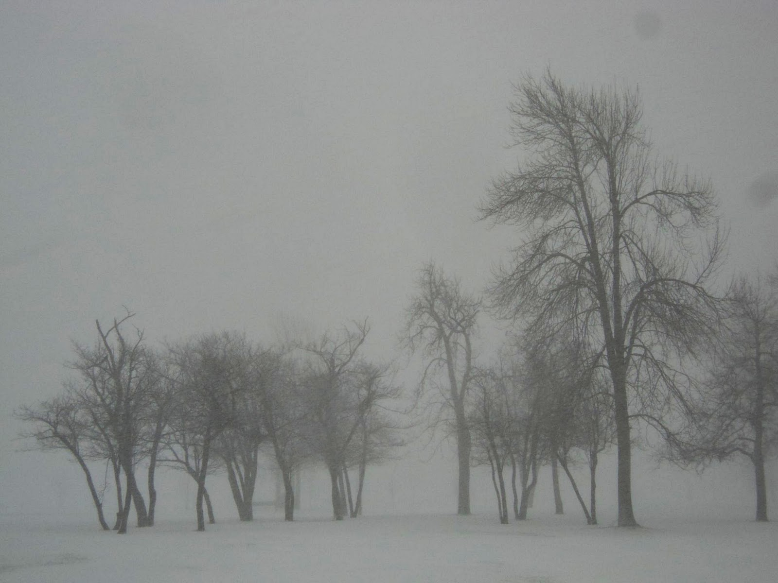 http://2.bp.blogspot.com/-d0f8-7ttc3g/TxDcOES6CLI/AAAAAAAAF04/xCuOvC3oRNM/s1600/Delaware+Park+2.jpg