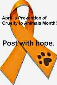 Prevention of Cruelty Month!