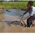 Empat Kelurahan Di Madiun Rawan Banjir
