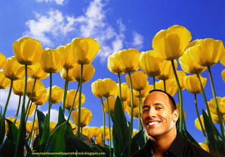 Desktop Wallpapers of Dwayne Johnson Smiling in Tulips Flowers Fields wallpaper
