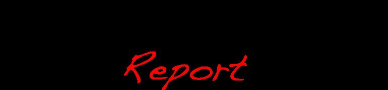 POW Report