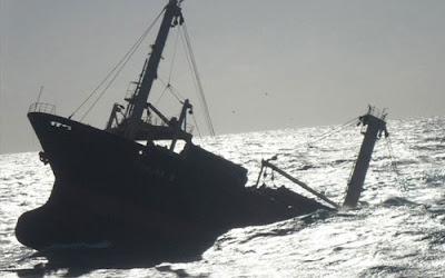 cargo ship Shinline